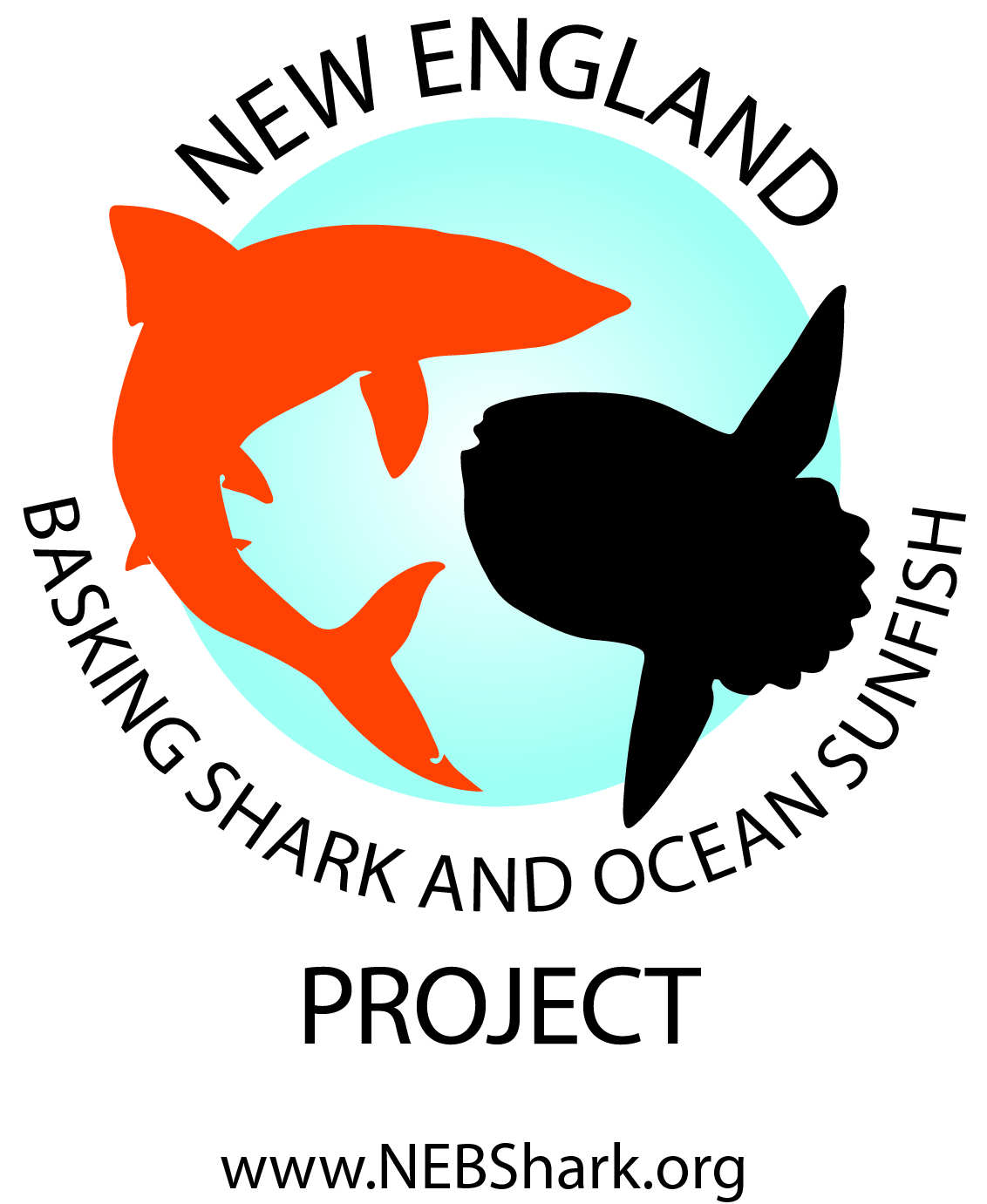 New England Basking Shark and Ocean Sunfish Project Logo